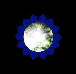 DMMS logo mandala